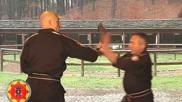 arti marziali tecniche